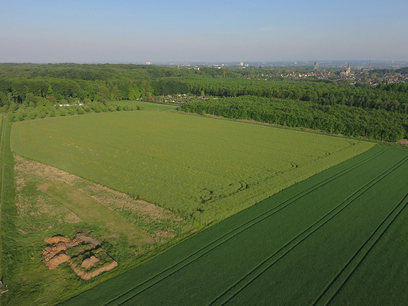 Holthausen20140505-1