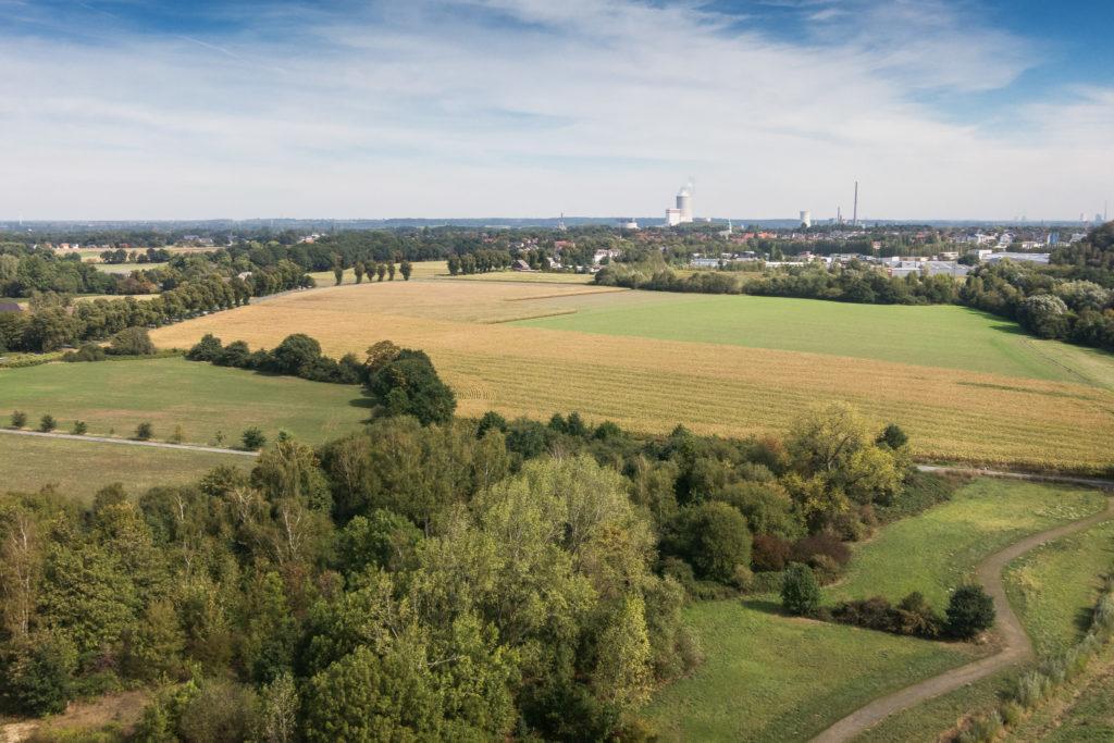 Blick vom Drachen über das nördliche Brambauer und das Münsterland