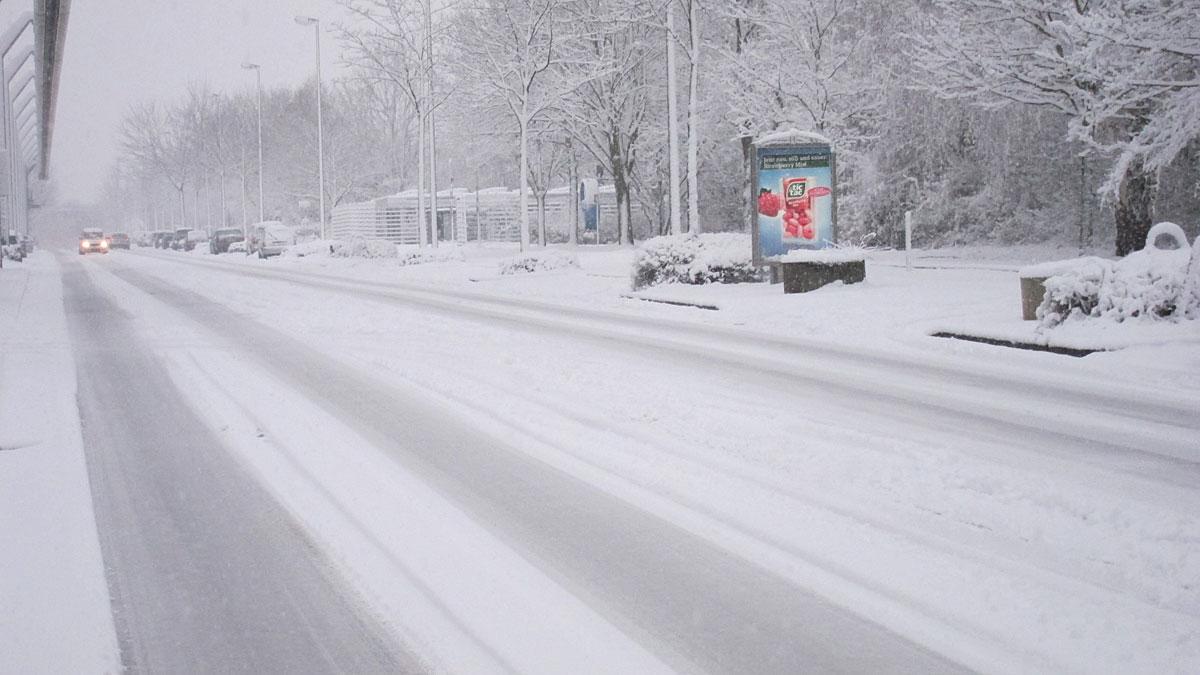 Winter_Feb2013