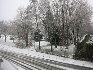 Wintertag_201412